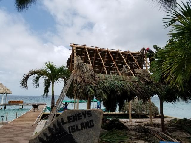 Island Development